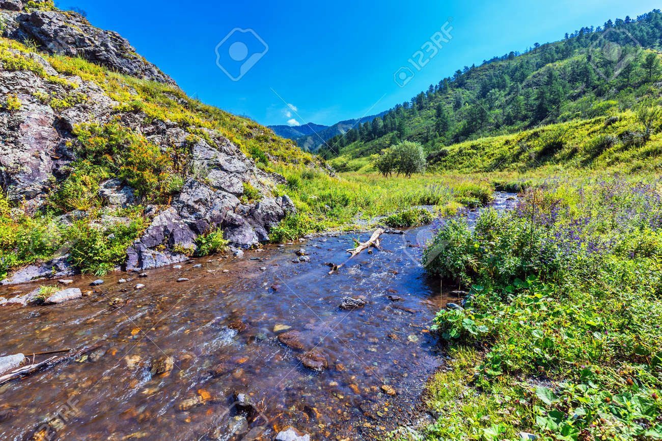 Choba river in summer surrounded by the Altai mountains. Chemalsky district, Altai Republic, southern Siberia, Russia - 129782172