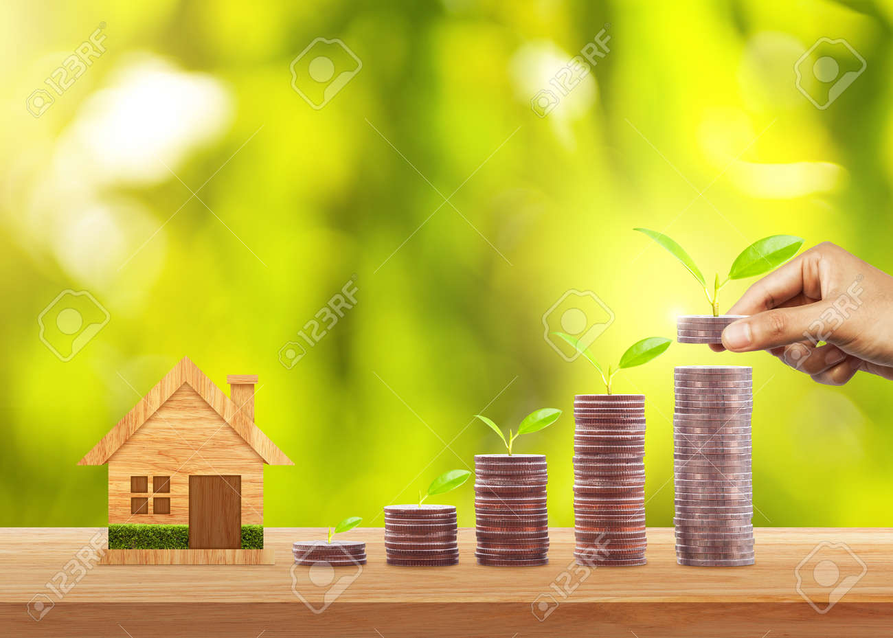 Hand putting money coins to stack of coins and growing plant on row of coin money for finance and banking. Investment and saving concept - 87155403