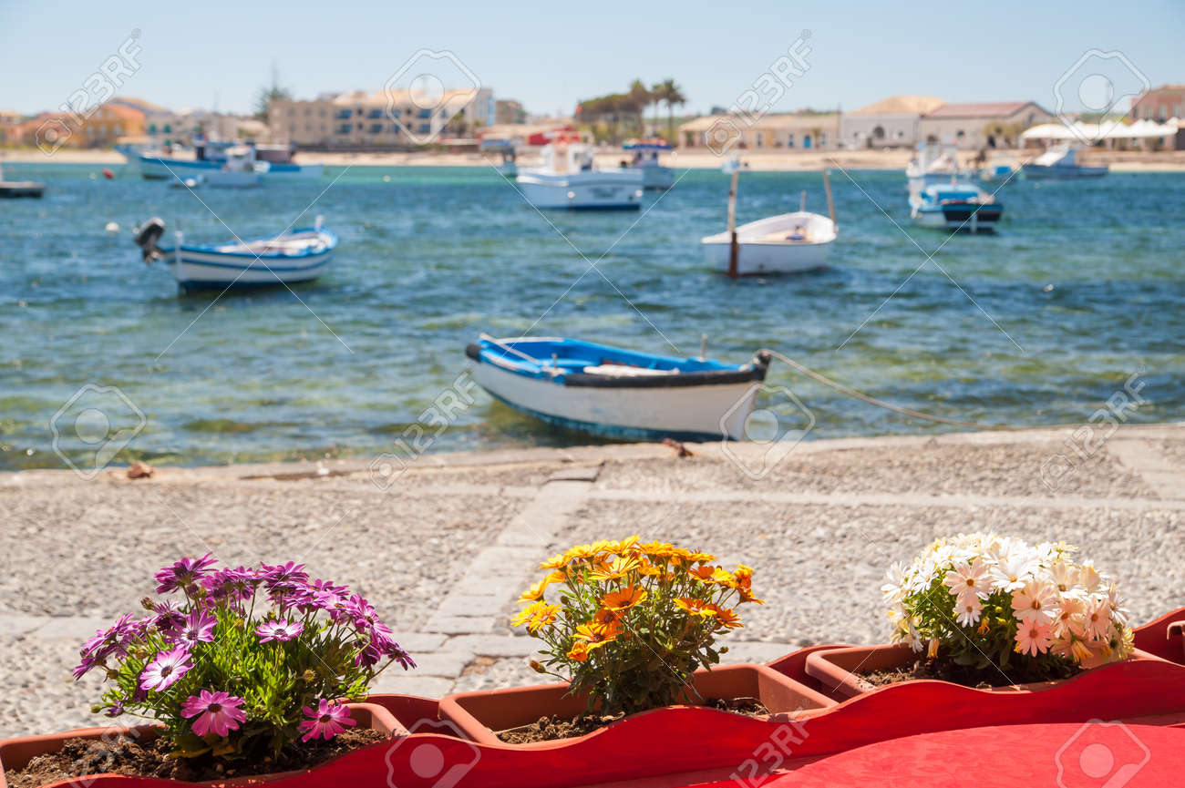 Flowered vases next to the harbor of the small sea village flowered vases next to the harbor of the small sea village marzamemi sicily with reviewsmspy