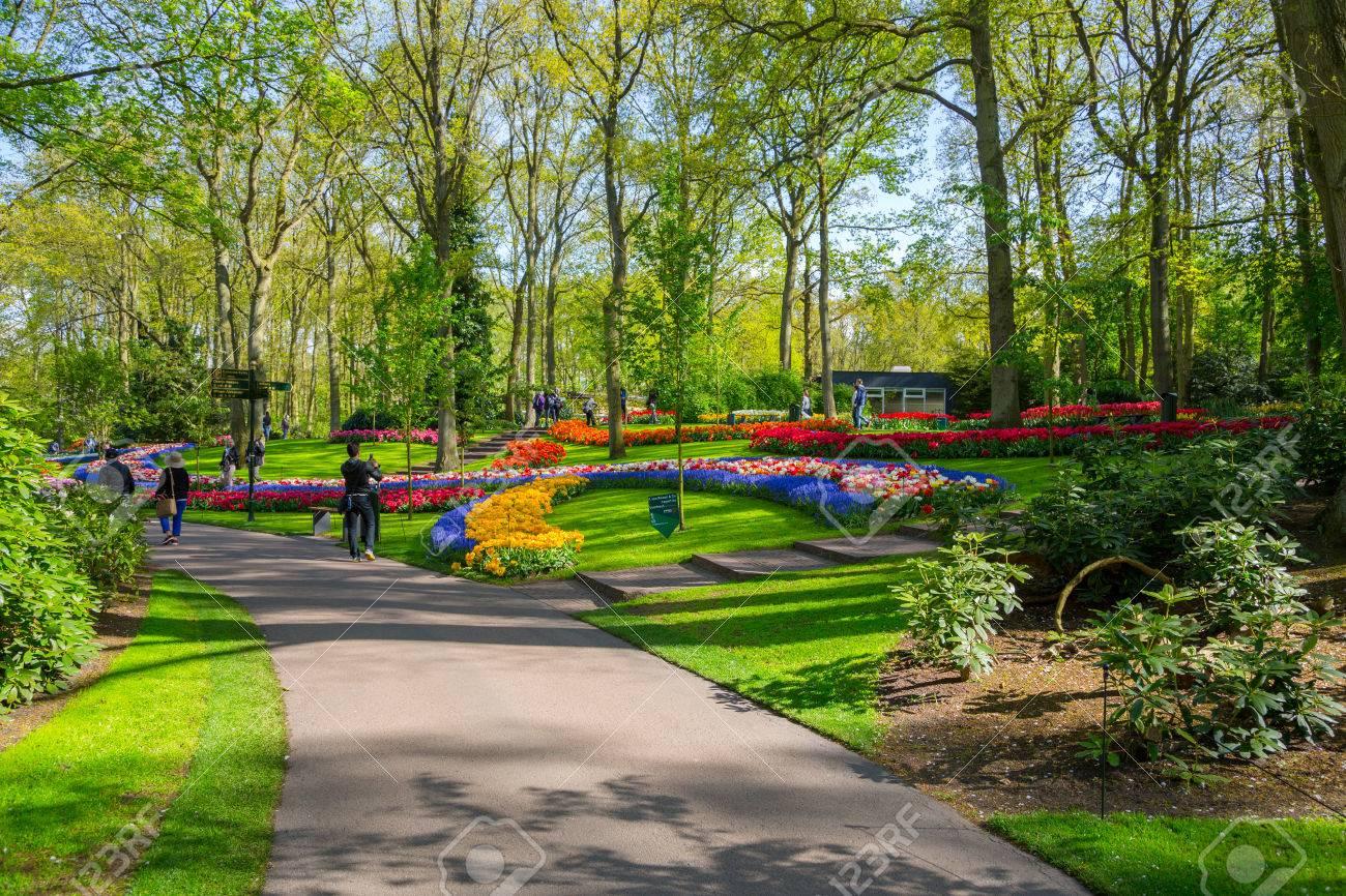 Lisse, Pays-Bas - 7 Mai 2016: Plate-bande De Tulipes Colorées Au ...