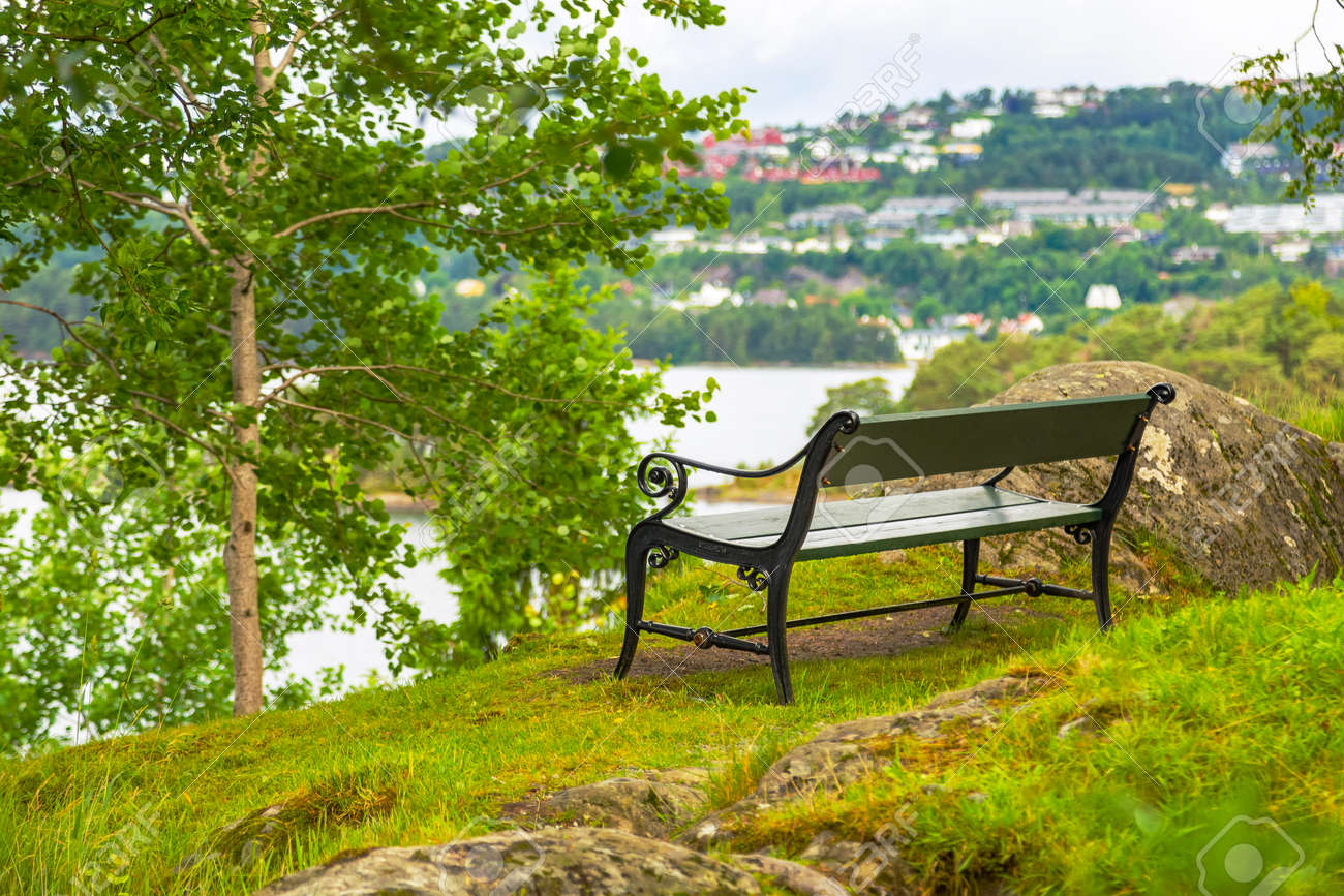 Fantastic Bench Without People In A Picturesque Place In Nature Bench Cjindustries Chair Design For Home Cjindustriesco