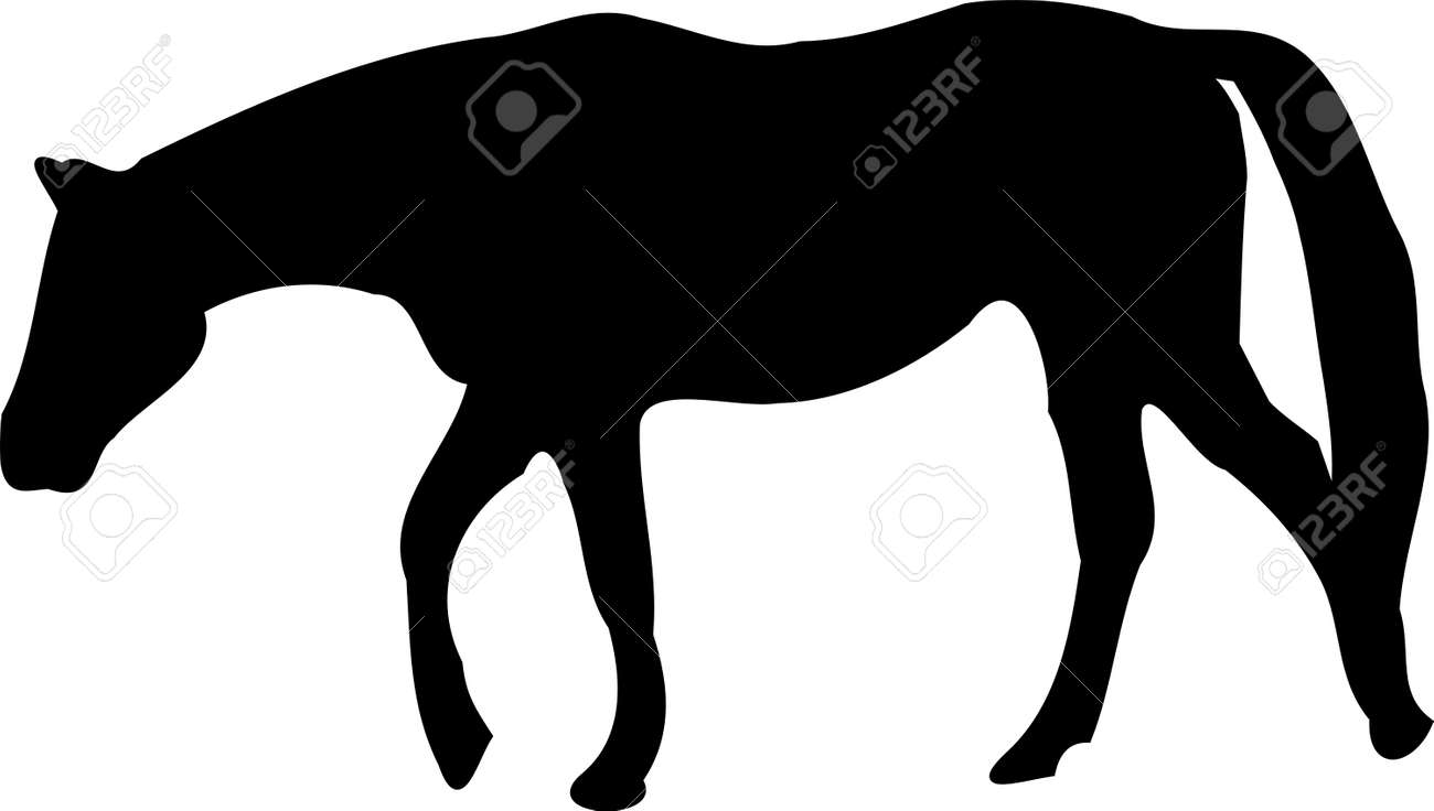 Illustration Of Walking Horse Silhouette Stock Photo Picture And Royalty Free Image Image 32829111