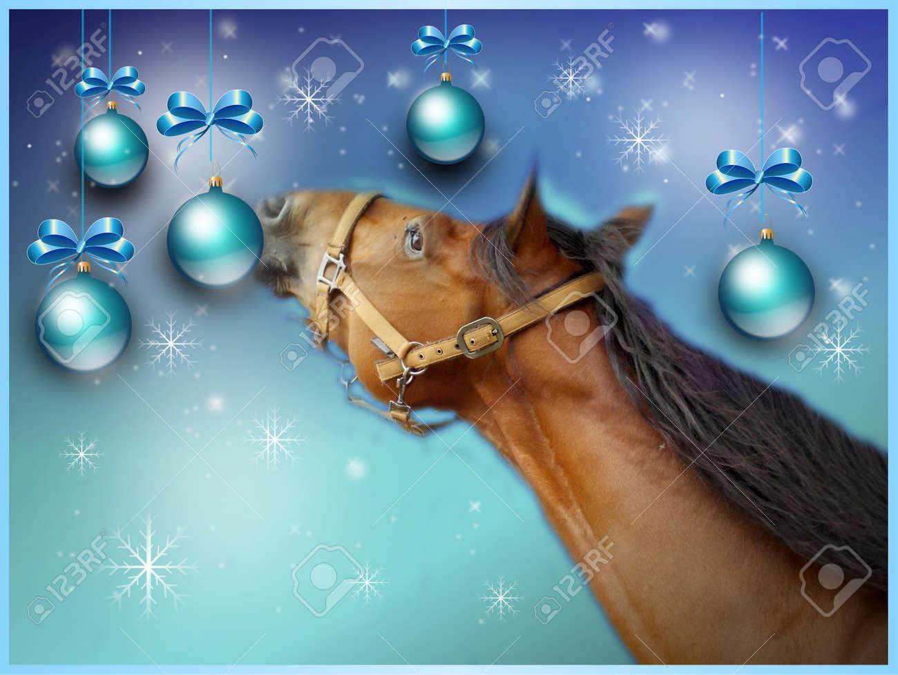 Bleu Clair Noël Carte De Voeux Avec Cheval Brun Banque D'Images Et