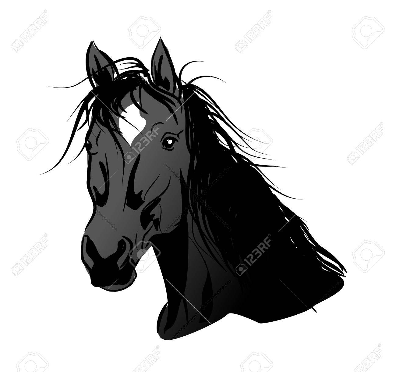 Illustration Of Black Horse Head With Long Mane Stock Photo Picture And Royalty Free Image Image 71158334