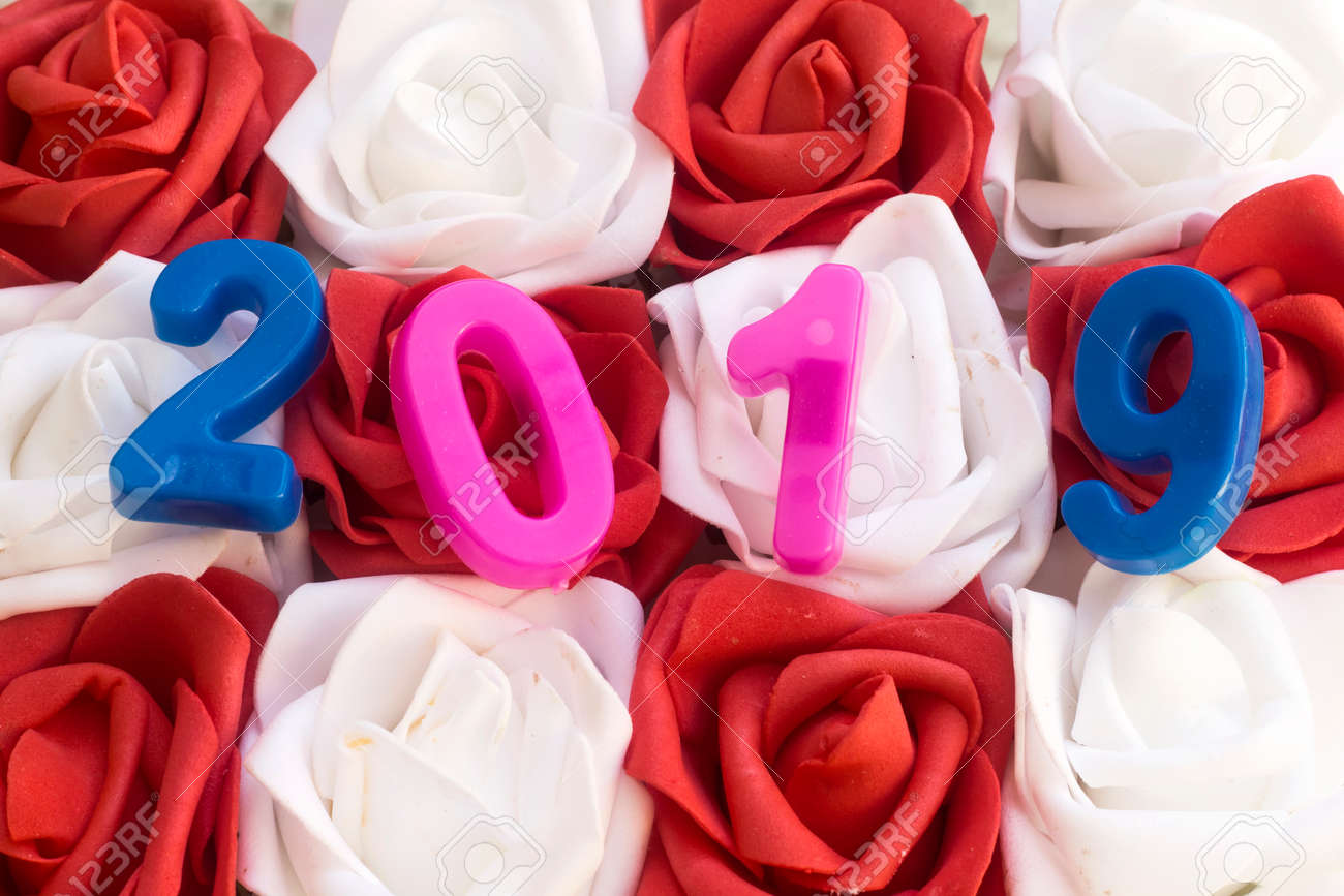 happy new year 2019 with red and white flowers stock photo 96776069