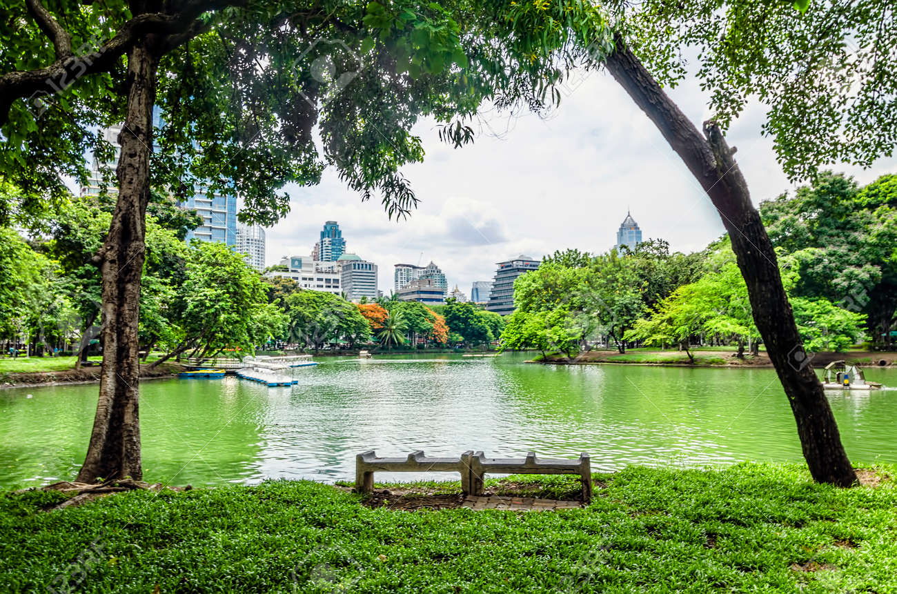 view of Lumpini Park in the Thai capital s city centre - 30552994