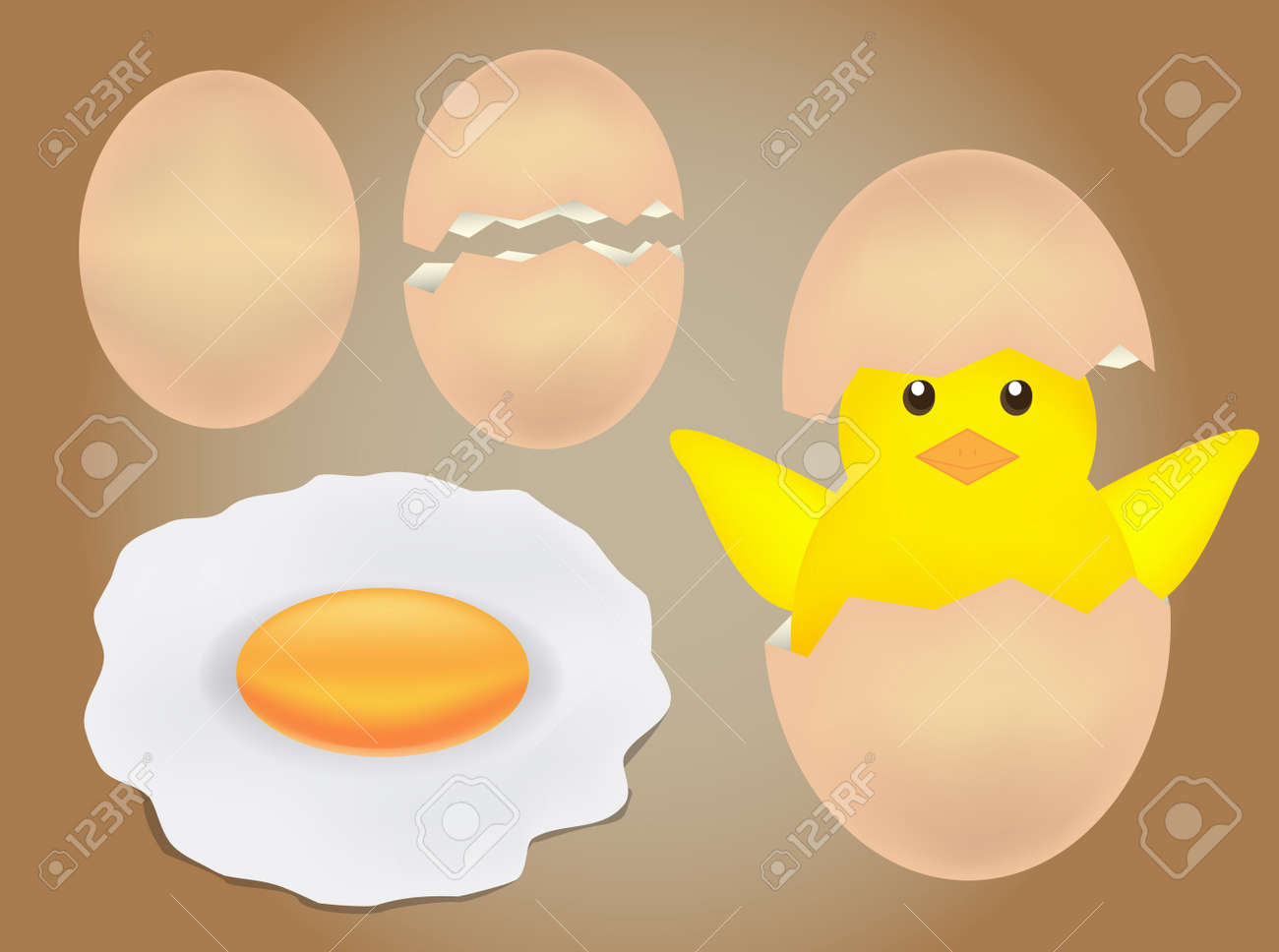 Egg and chick vector - 54461911