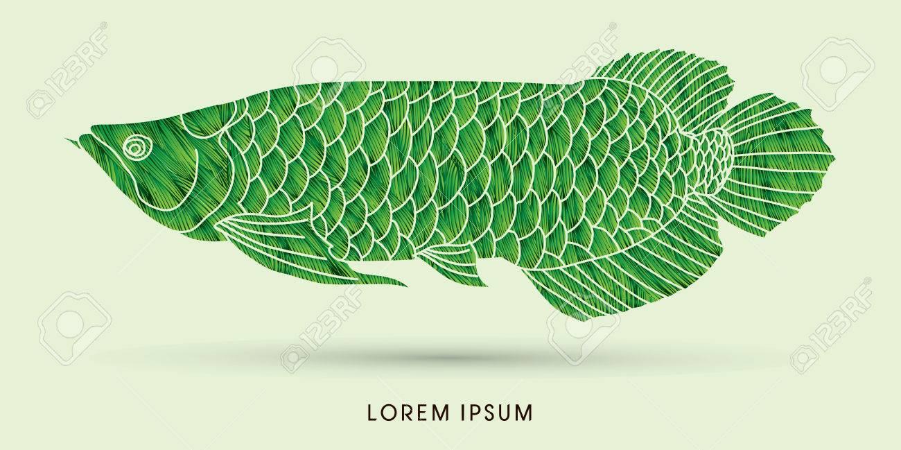 Grüne Arowana Fische Die Grunge Pinsel Vektor Grafik Verwenden