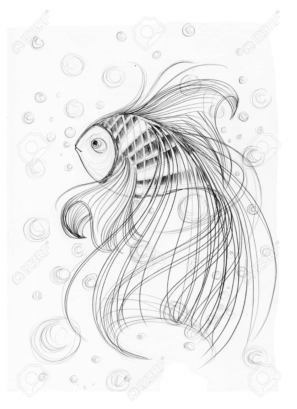 Cute fish imagination applied art design freehand pencil sketch black and white background is bubbles