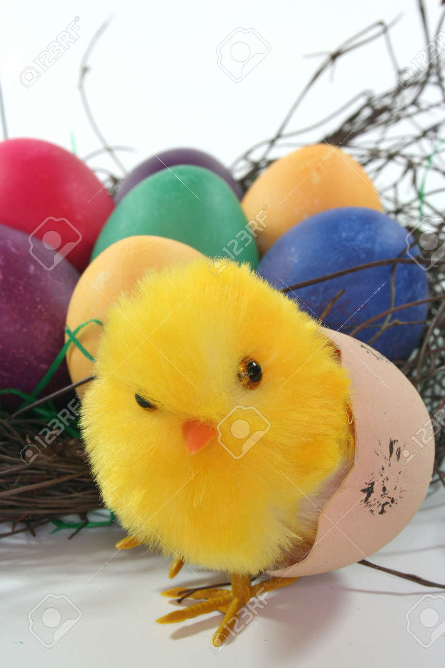 Easter chicks with nest and eggs Stock Photo - 6470415