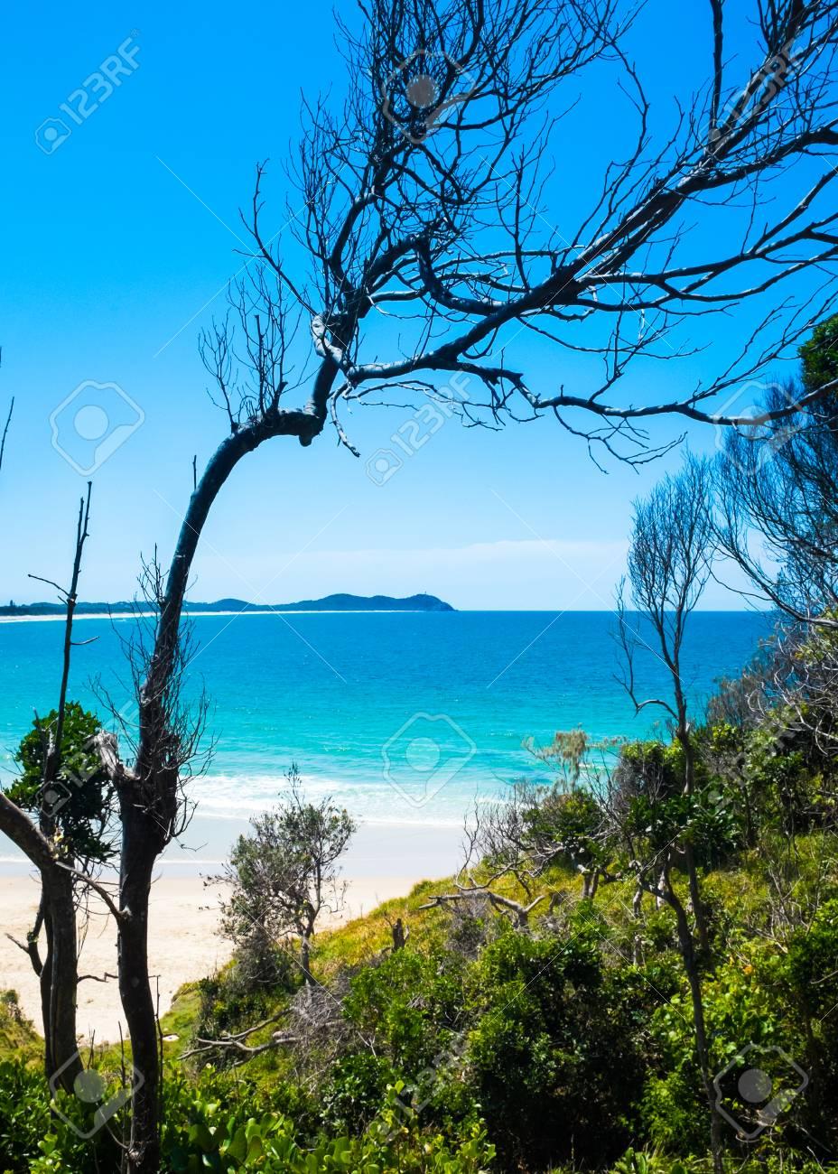 Glimpse Of Broken Head Beach A Través De Los árboles. Más Allá De ...