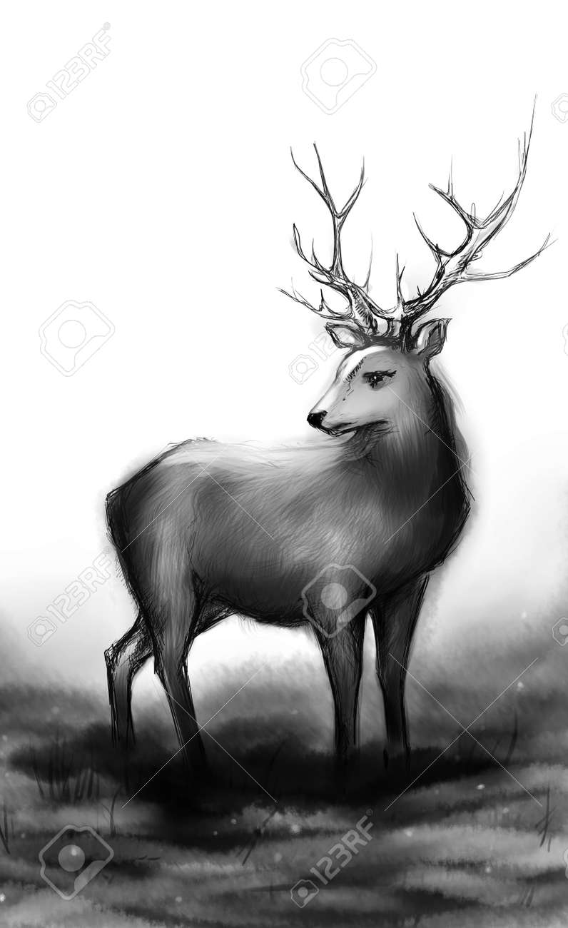 Stock photo winter snow forest black and white monochrome deer with big horns