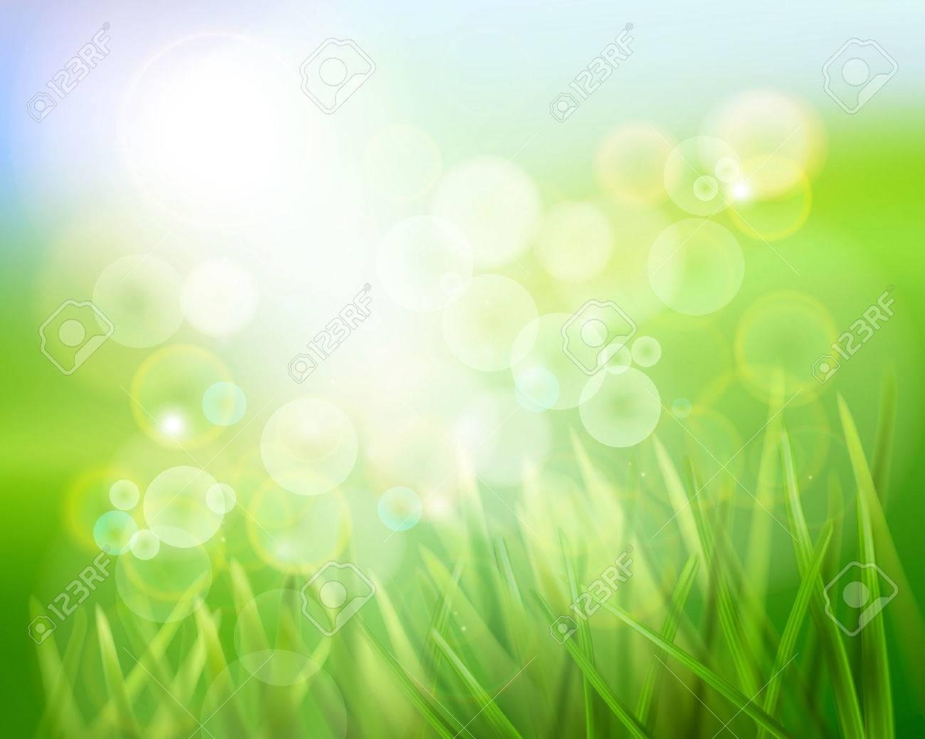Grass in sunlight. Vector illustration. - 35999361