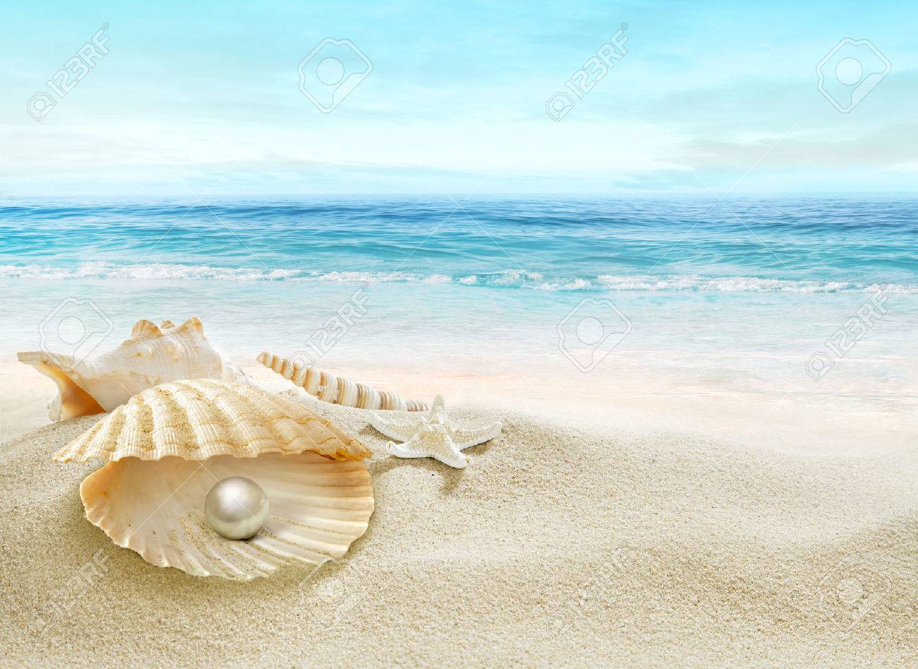 The shell with a pearl. - 54767513