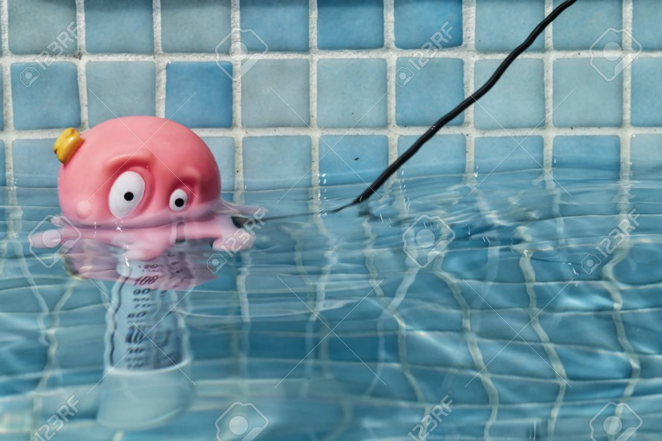 Swimming pool thermometer with octopus head.