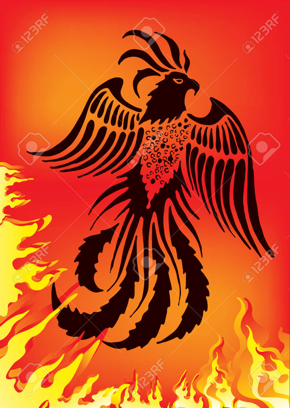 Vector illustration of phoenix on red background Stock Vector - 6612013