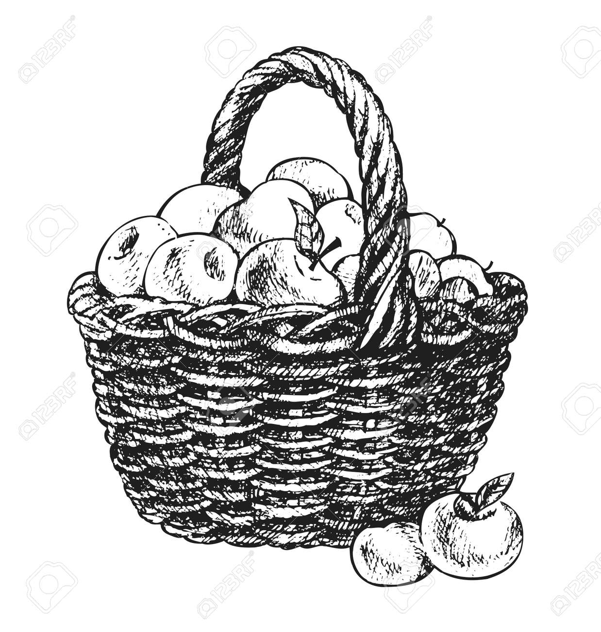 doodle picnic basket images u0026 stock pictures royalty free doodle