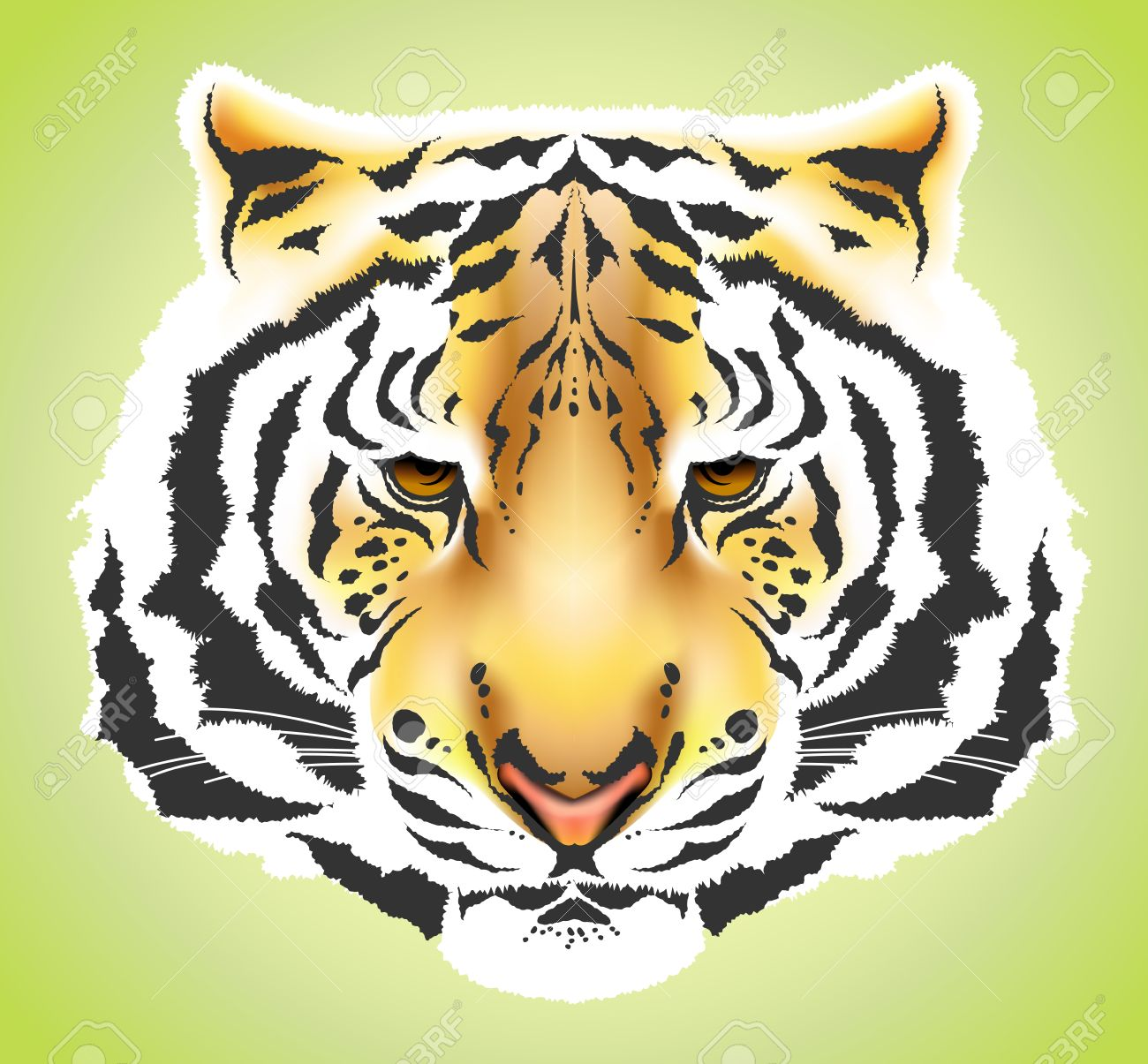 Tiger head colorful high quality illustration - gradient mesh Stock Vector - 7860231