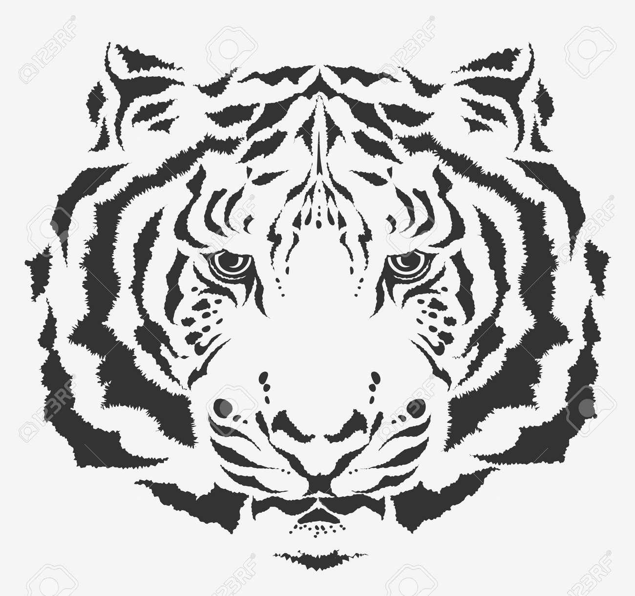 white tiger Stock Vector - 7860187