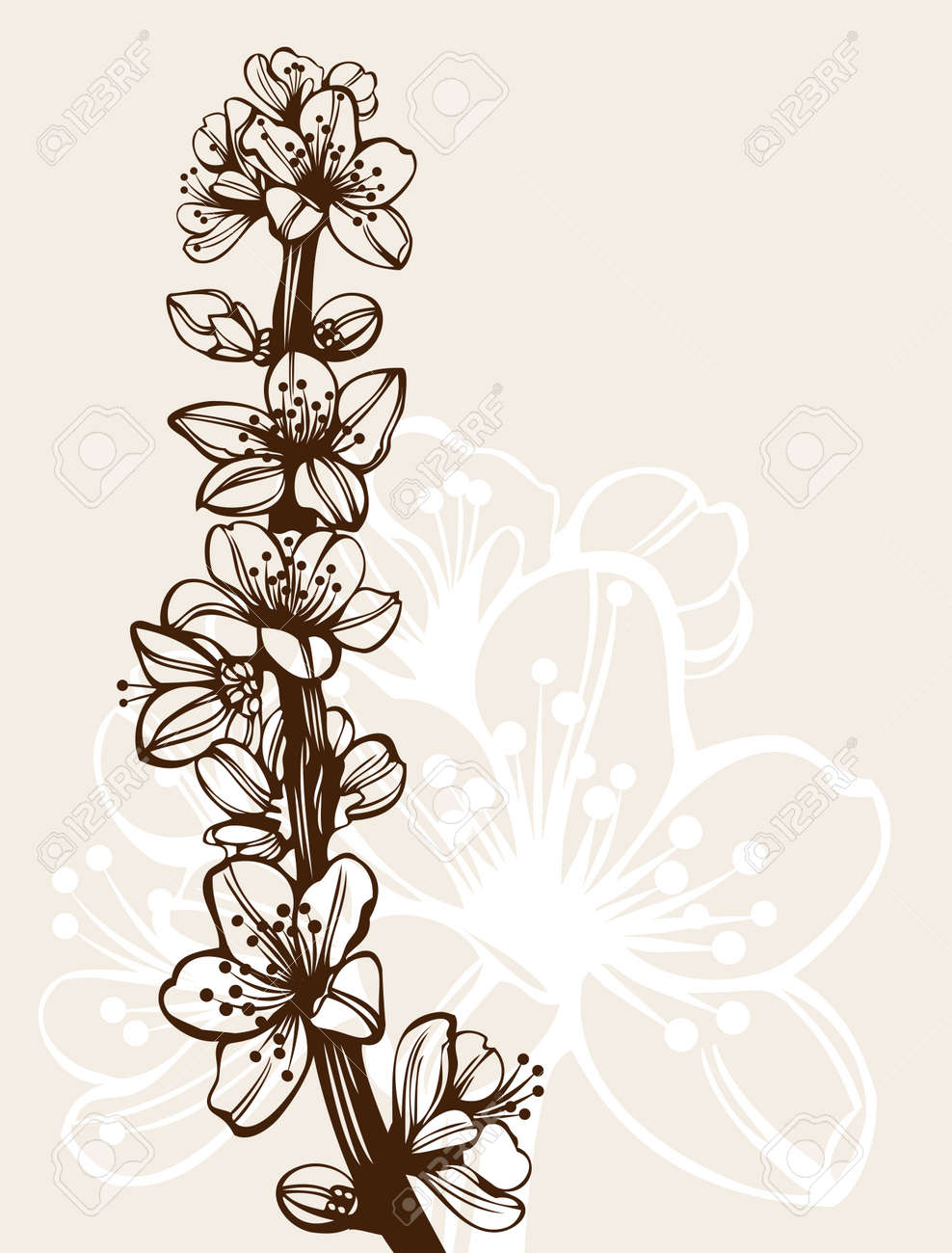 Blossom cherry flowers branch high quality detailed drawing Stock Vector - 7860145