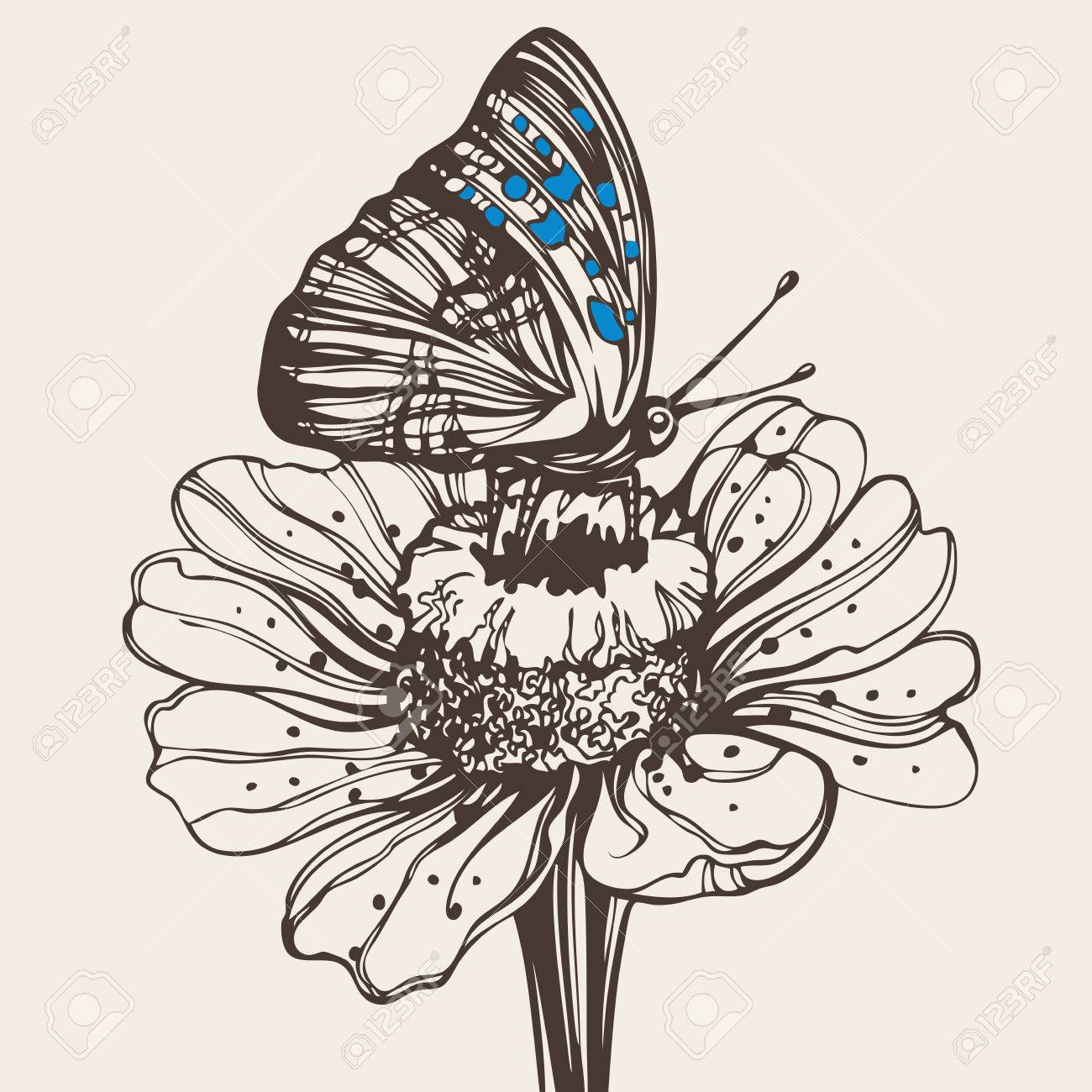 butterfly on a flower royalty free cliparts vectors and stock