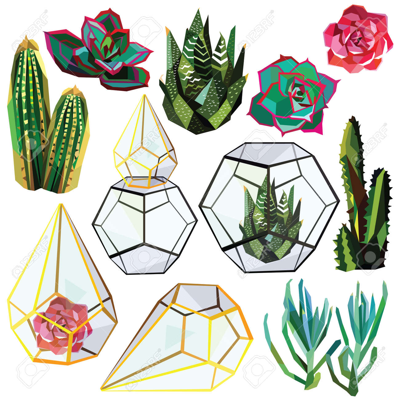 Cactus Succulent Flower Low Poly Set With Glass Terrariums Vector Royalty Free Cliparts Vectors And Stock Illustration Image 55722277