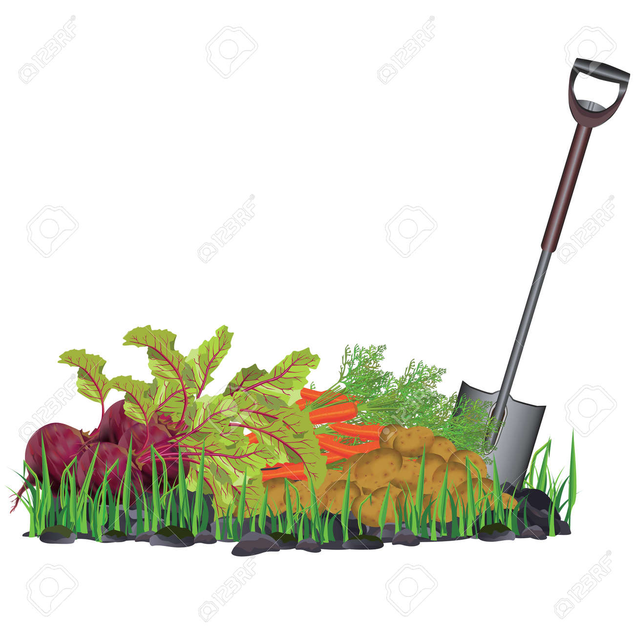33657 Vegetable Garden Cliparts Stock Vector And Royalty Free