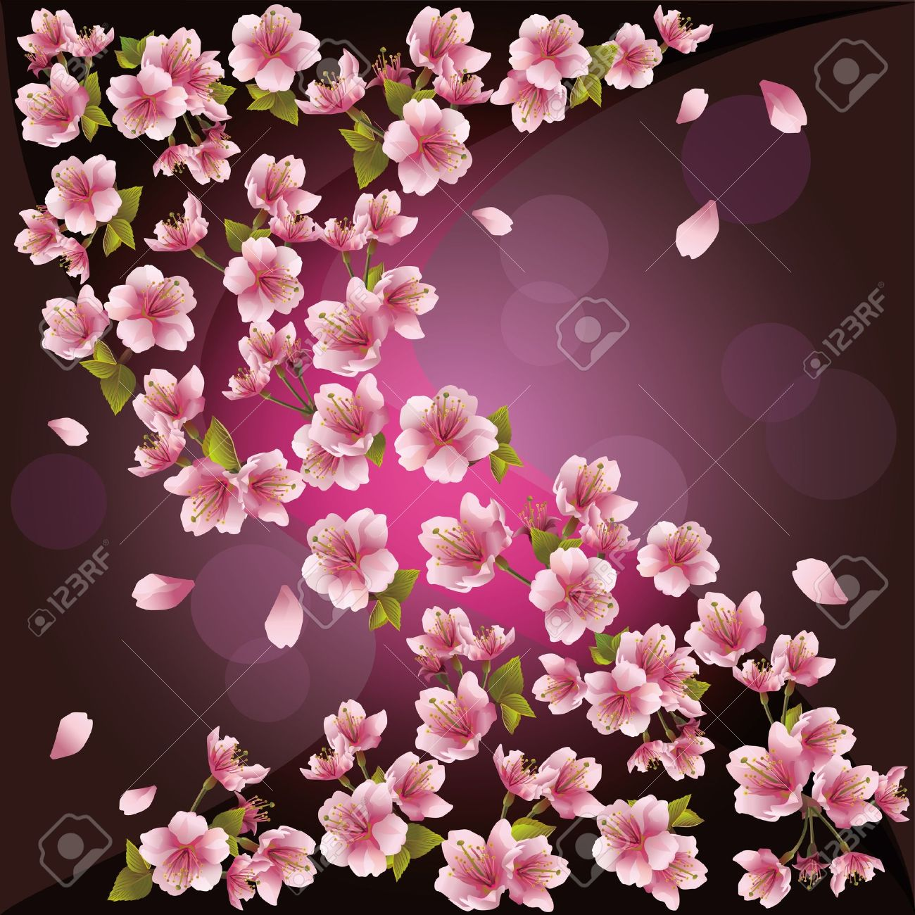 Background with pink sakura blossom - Japanese cherry tree, greeting or invitation card. Stock Vector - 14597529