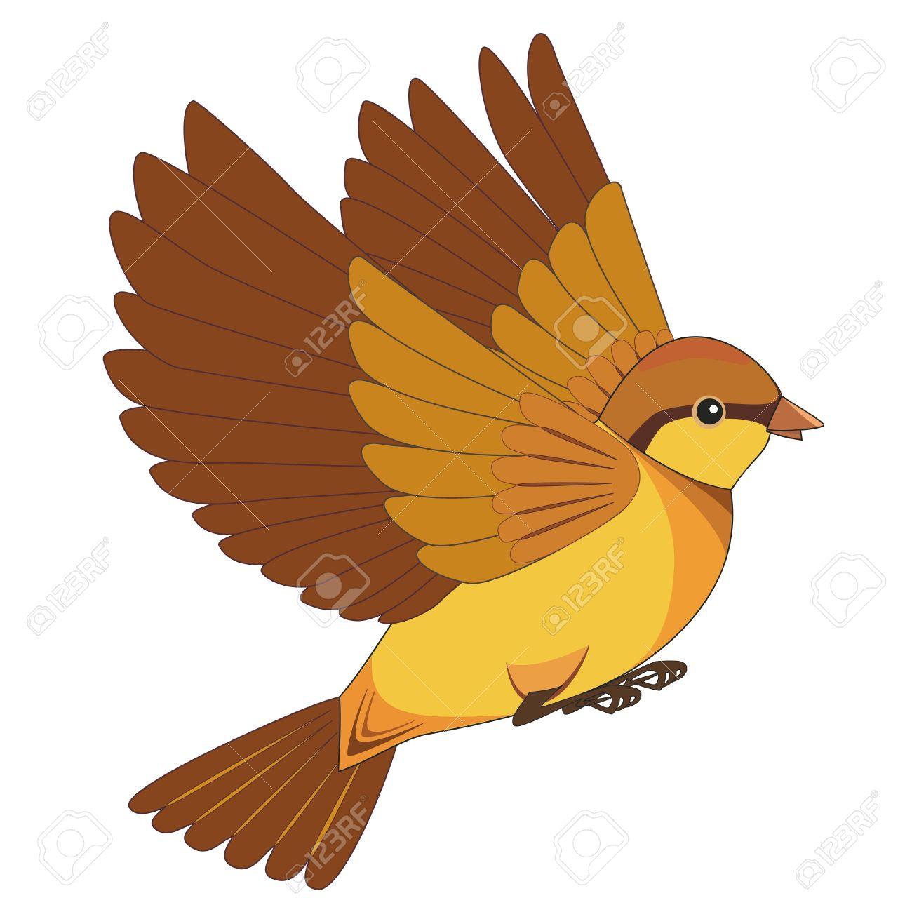 Dessin Oiseau Qui Vole Isolé Sur Fond Blanc Vector Illustration