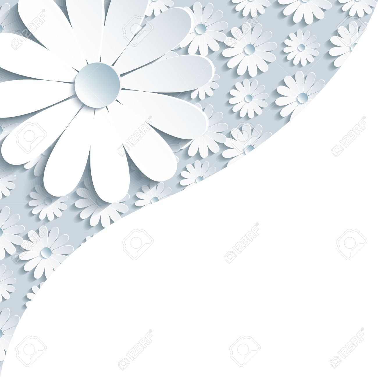 Stylish Creative Gray Background With 3d White Chamomile Floral Modern Wallpaper Place For Text Vector Illustration