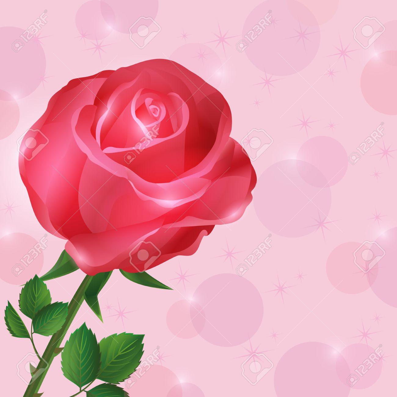 Beau Fond D Ecran Avec Des Fleurs Rose Rouge Romantique Fond Rose