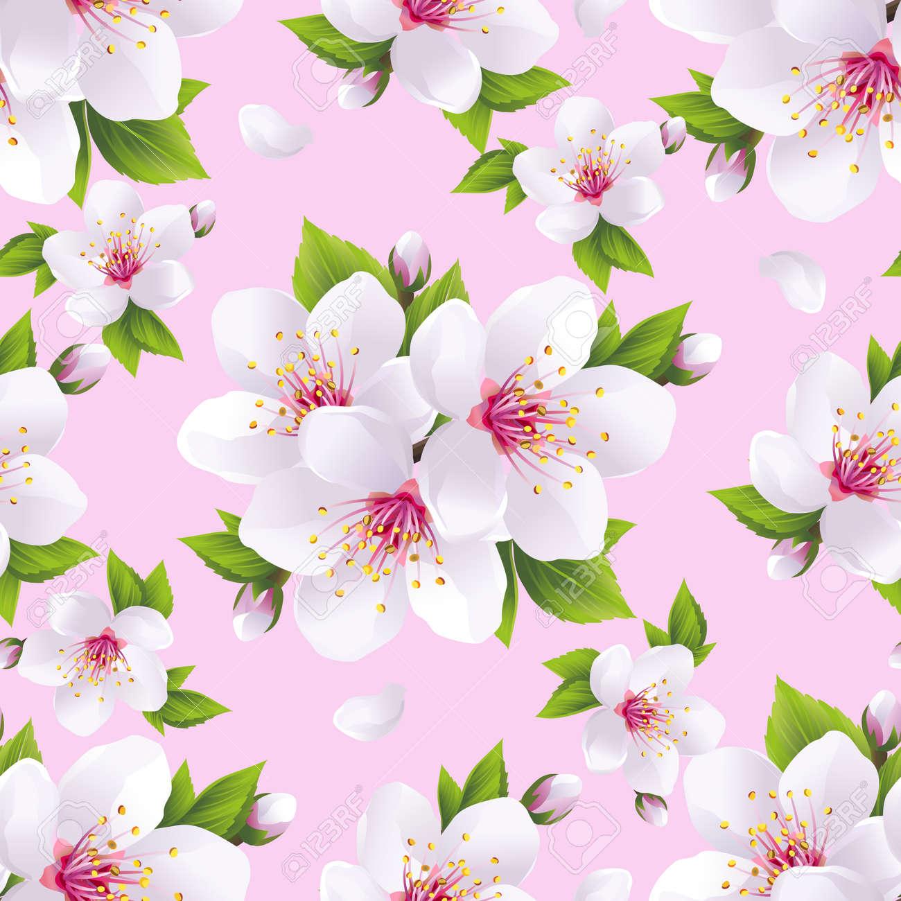 美しい明るい背景白桜日本の桜の木とのシームレスなパターン 花春