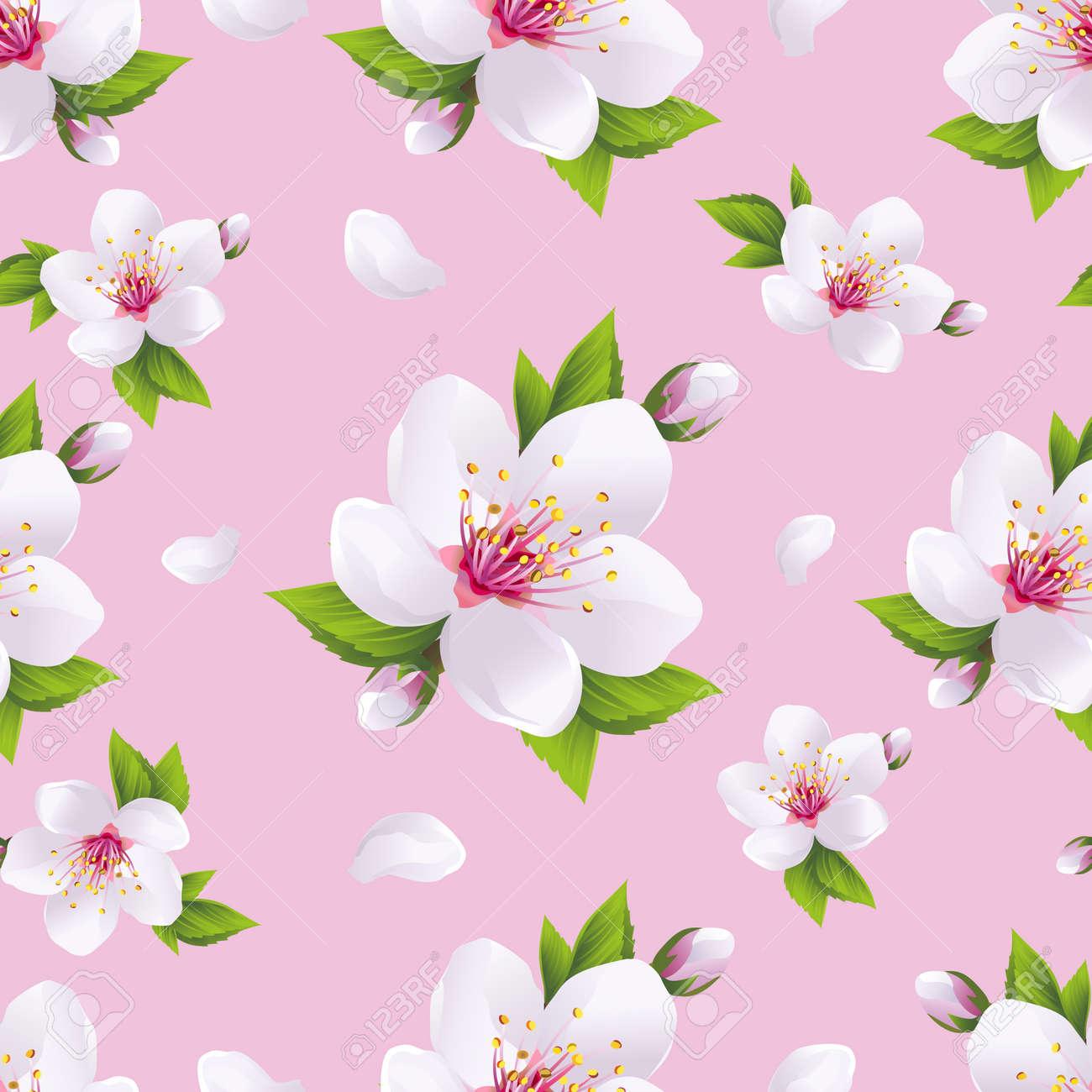 美しい明るい背景の白い桜の花 - 日本の桜の木とフライングの花びらを