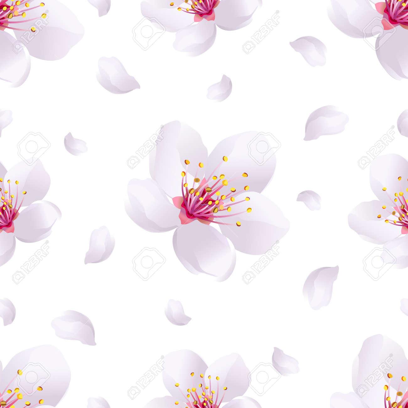 美しい光春 背景白桜 日本の桜の木とフライングの花びらとシームレスなパターン ロマンチックな花の壁紙 ベクトル イラストのイラスト素材 ベクタ Image