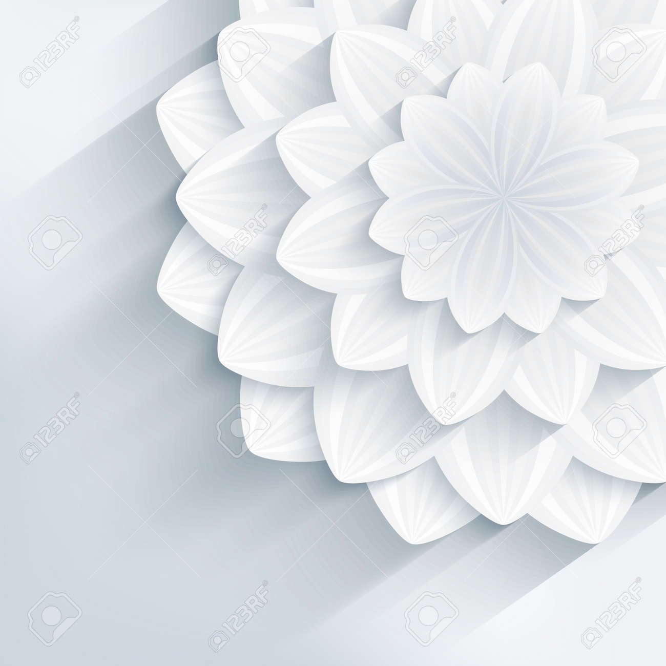 Floral Trendy Creative Background With White And Gray Stylized 3d Flower Beautiful Stylish Modern Wallpaper