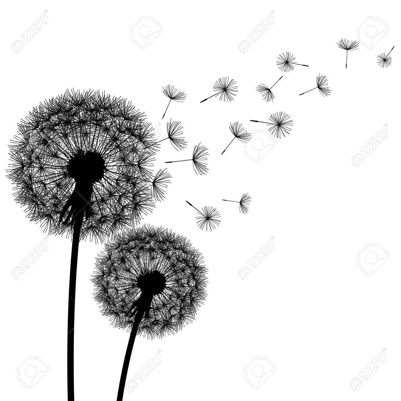 Two Delicate Black Dandelions Silhouette With Flying Fluff On White Background Floral Modern Stylish Wallpaper
