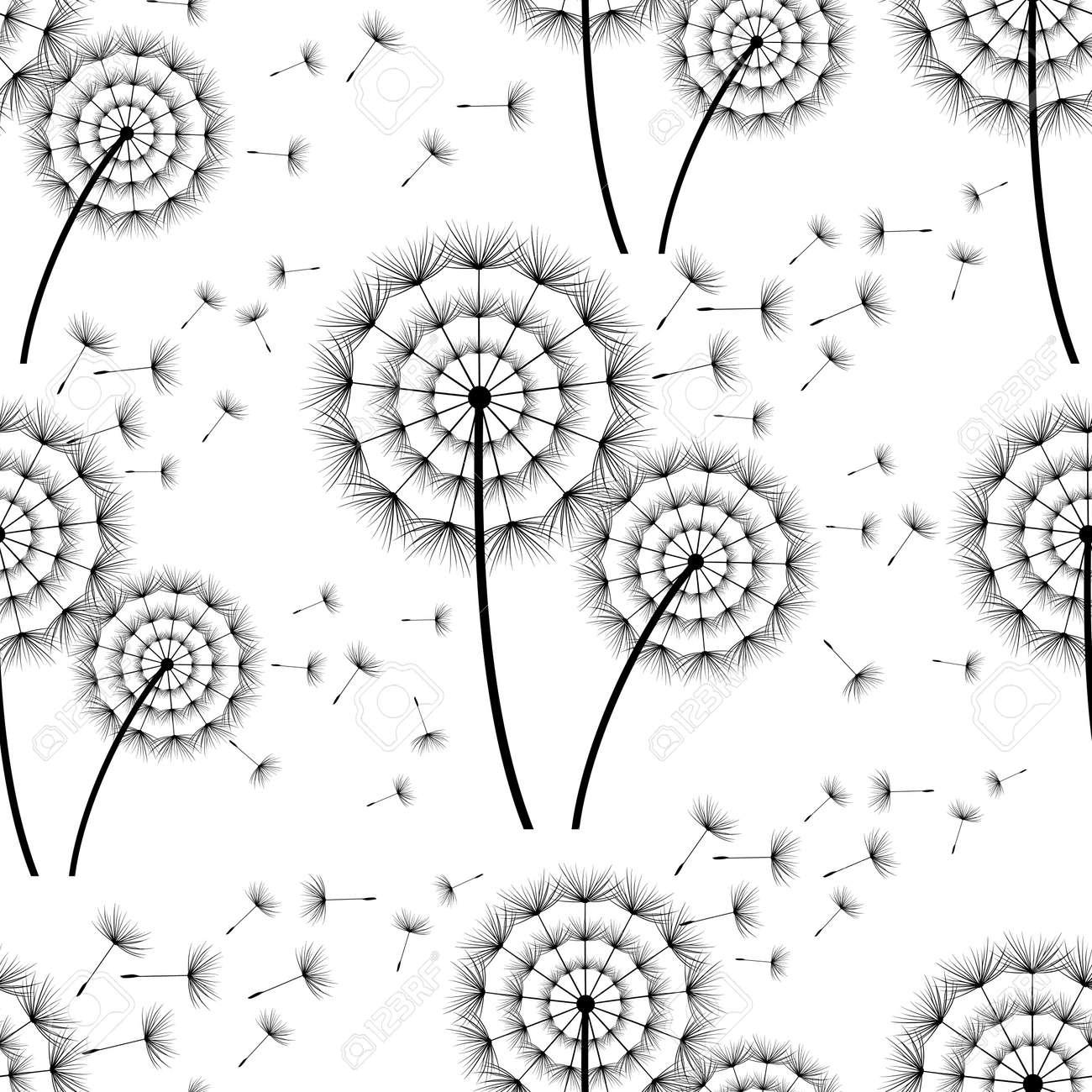 Beau Fond Transparent Noir Blanc Avec Pissenlit Stylise Et Duvet