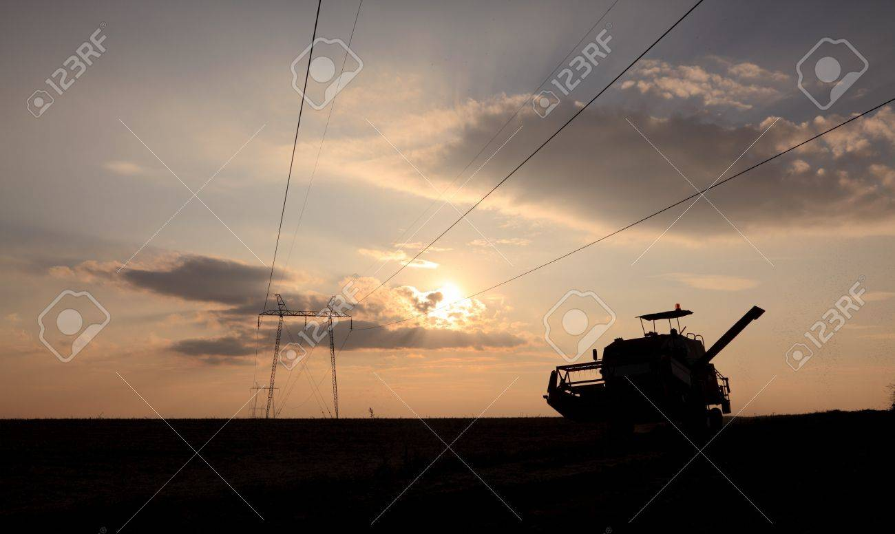 Combine in field under high voltage electrical pylon with flock of mosqutoes, late afternoon and contra light Stock Photo - 7886297