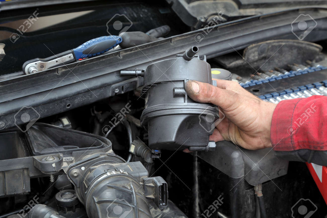 Car Mechanic Replacing Fuel Filter At Modern Diesel Engine Stock Filters For Engines Photo 20191463