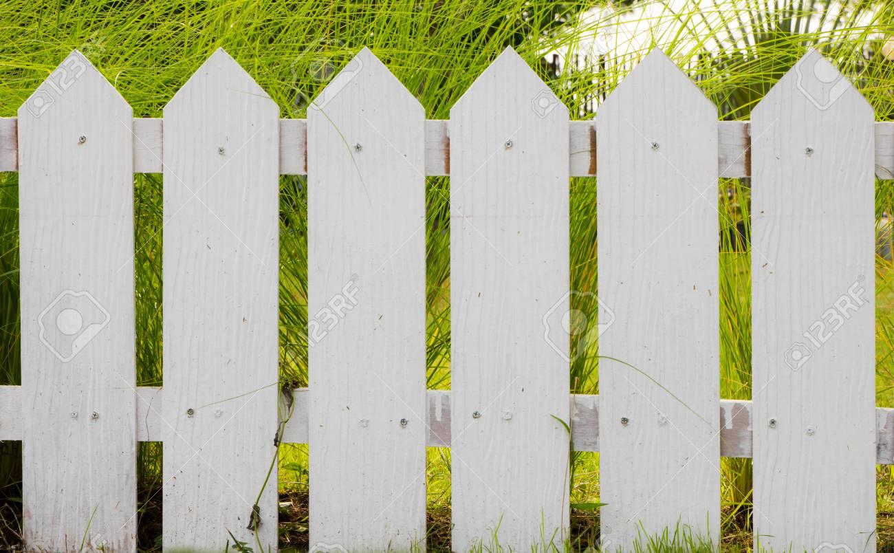 weißer zaun auf grünem gras lizenzfreie fotos, bilder und stock
