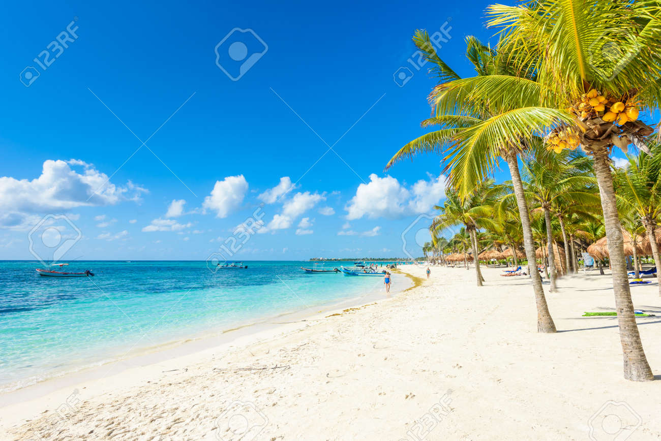 Akumal beach - paradise bay Beach in Quintana Roo, Mexico - caribbean coast - 83525491