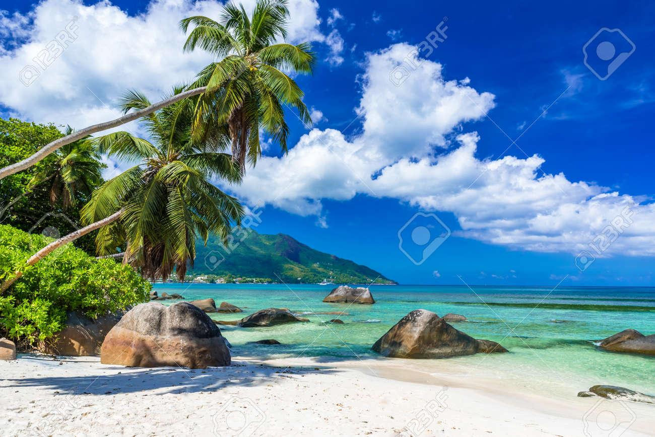 Baie Beau Vallon - Beach on island Mahe in Seychelles - 85157104