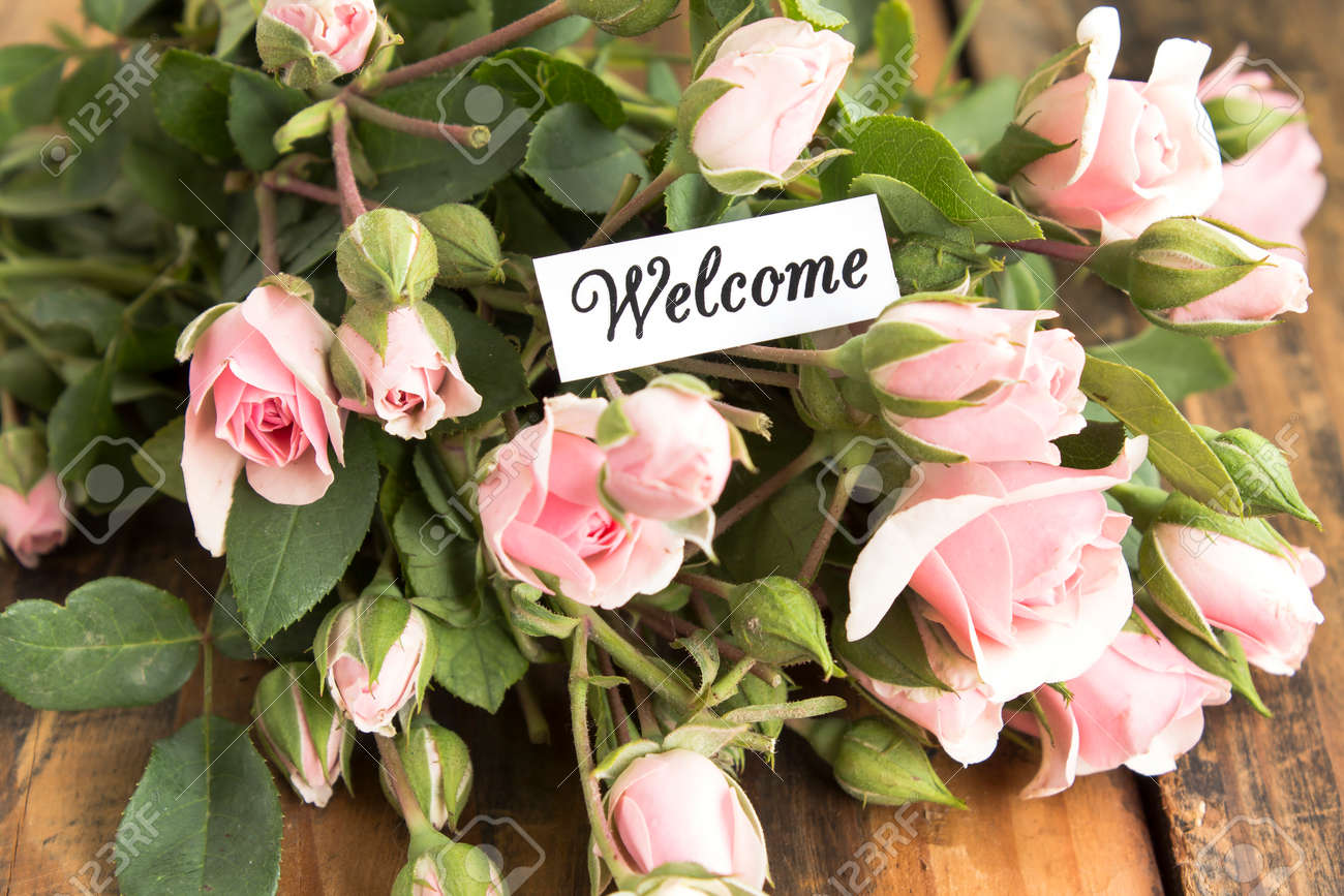 Welcome Card With Bouquet Of Pink Roses Stock Photo Picture And