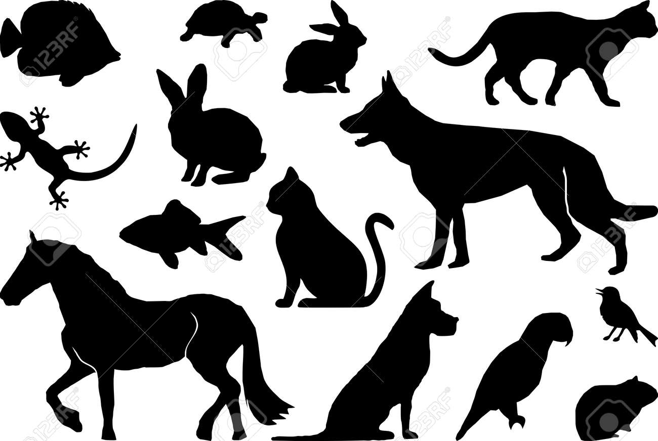 Animal Pets Set Silhouette Outline - 140510307
