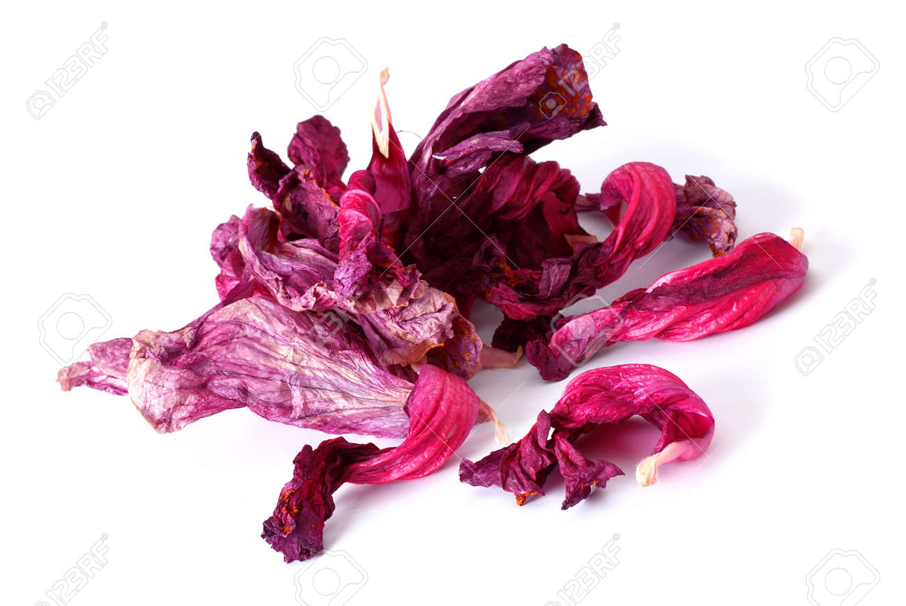 Drying Hibiscus Tea Petals Over White Background Stock Photo