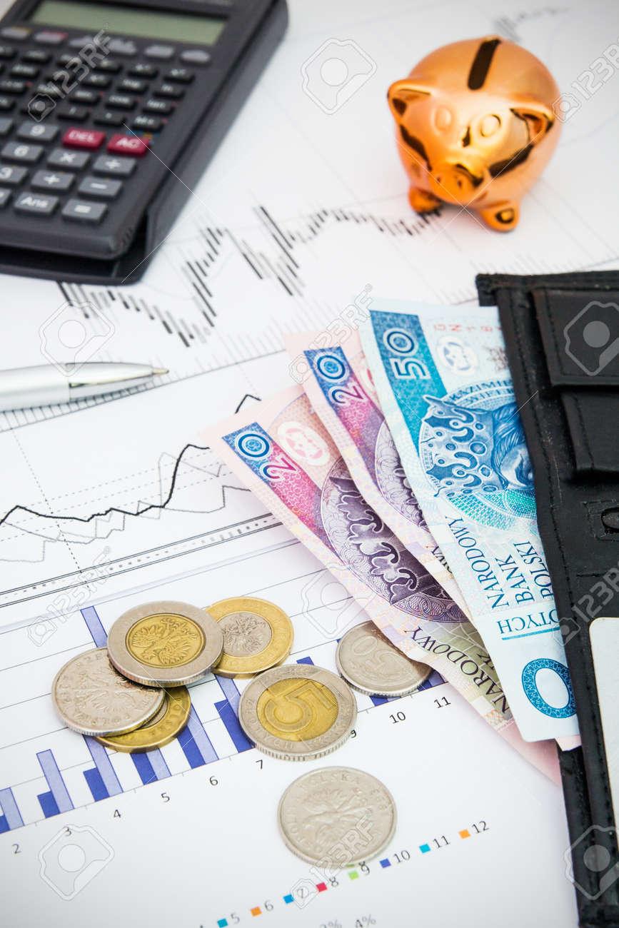 Münzen Und Schwein Spar Konzept Polnisches Geld Lizenzfreie Fotos