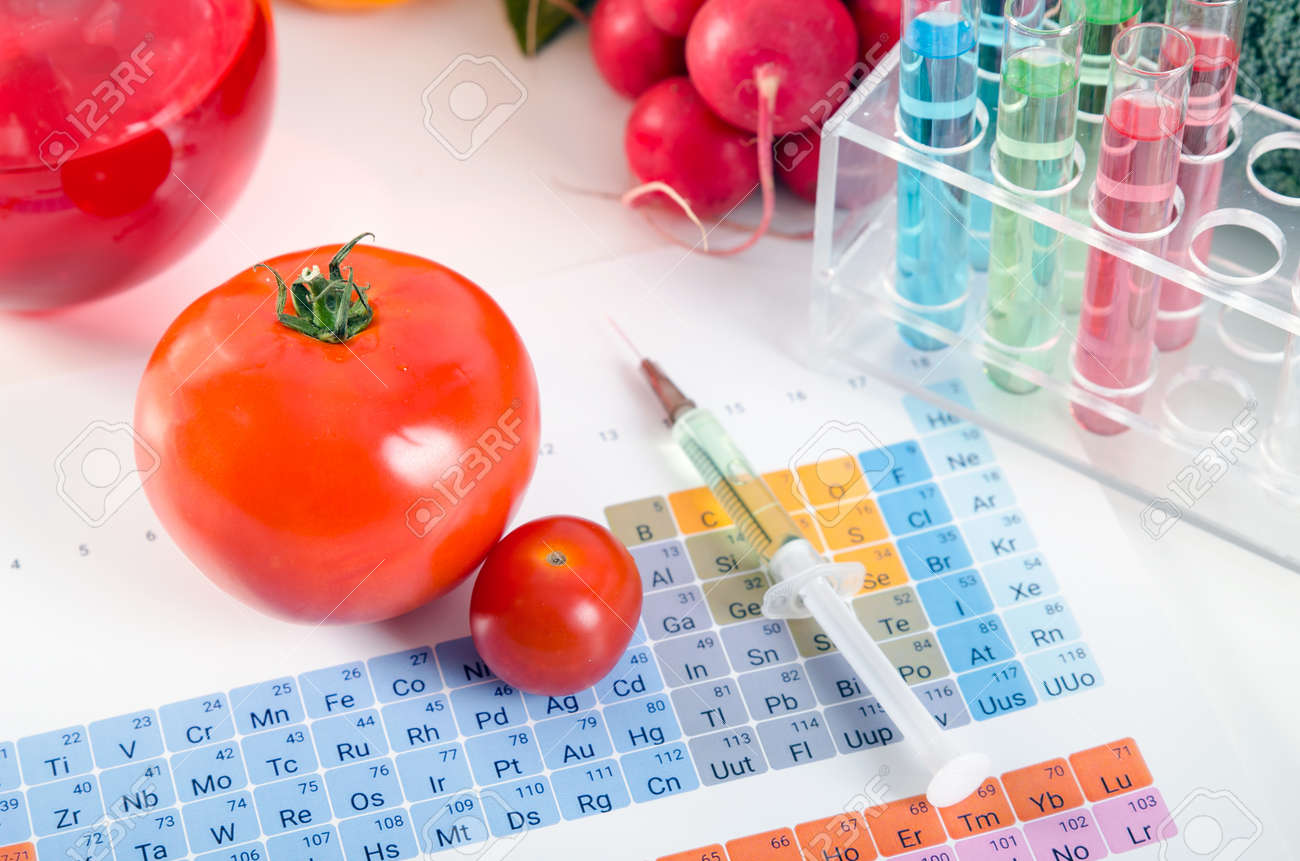 Tomatoes syringe test tubes in laboratory on periodic table tomatoes syringe test tubes in laboratory on periodic table genetically modified food conception gamestrikefo Image collections