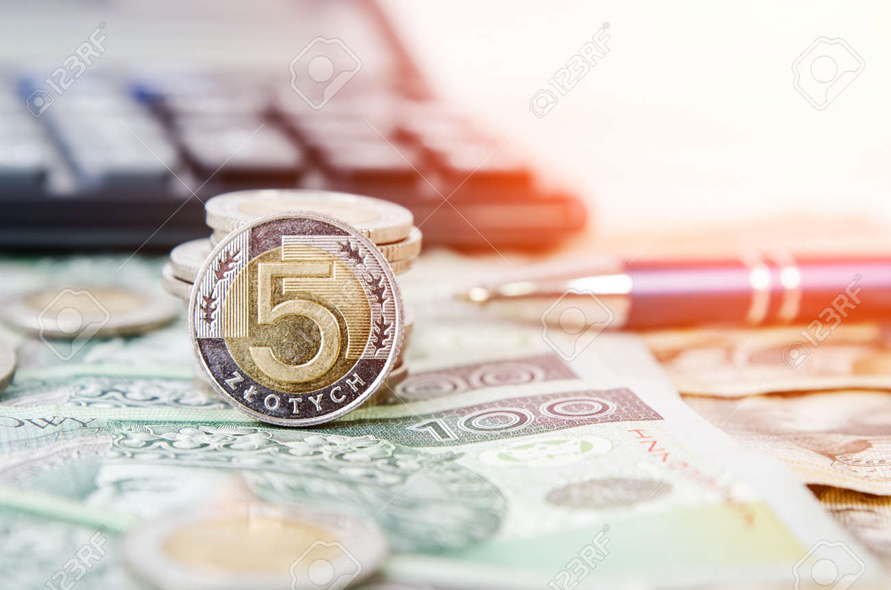 Polnisches Geld Schließen Herauf Geschäftszusammensetzung Polnische