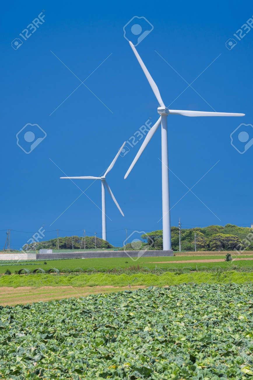 Wind Power Pics Wind-power Field