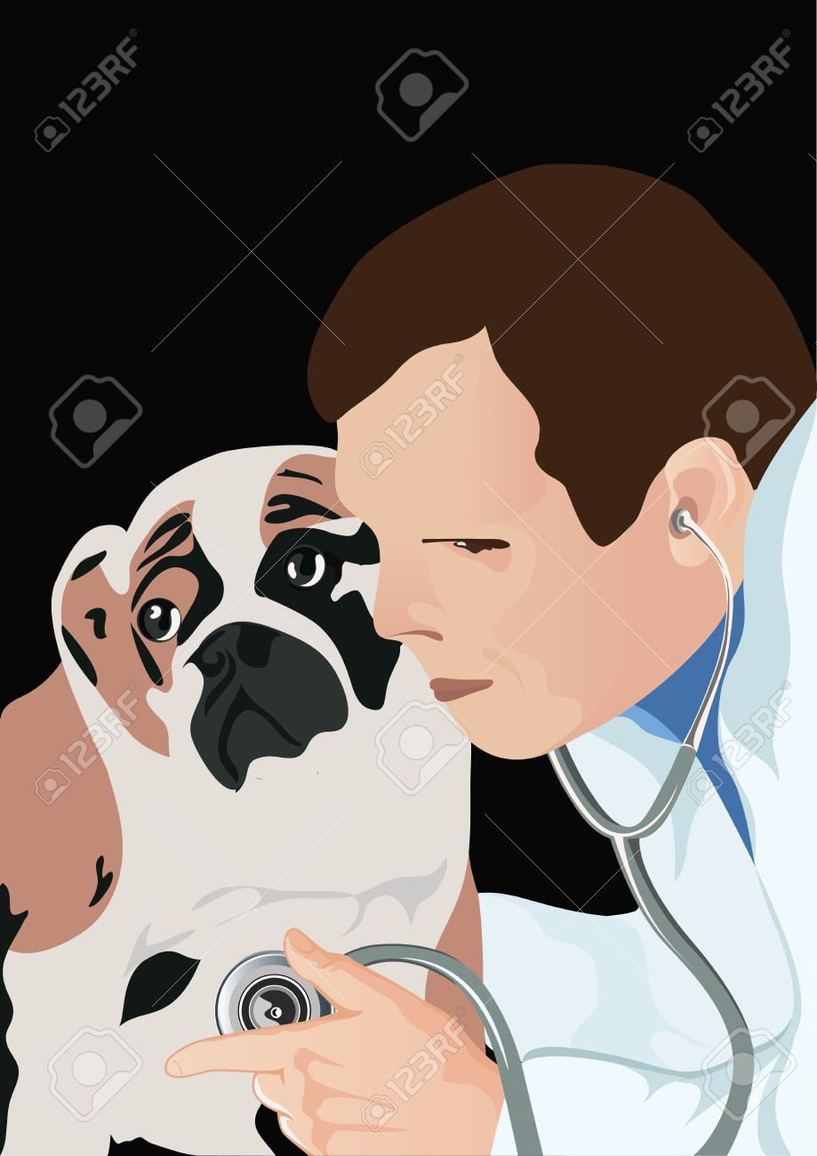 veterinarian with phonendoscope and dog, veterinarian examining dog and listening with stethoscope during checkup, vector illustration Stock Vector - 12761631